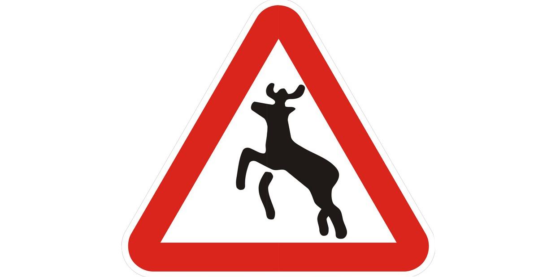 знак животные на дороге