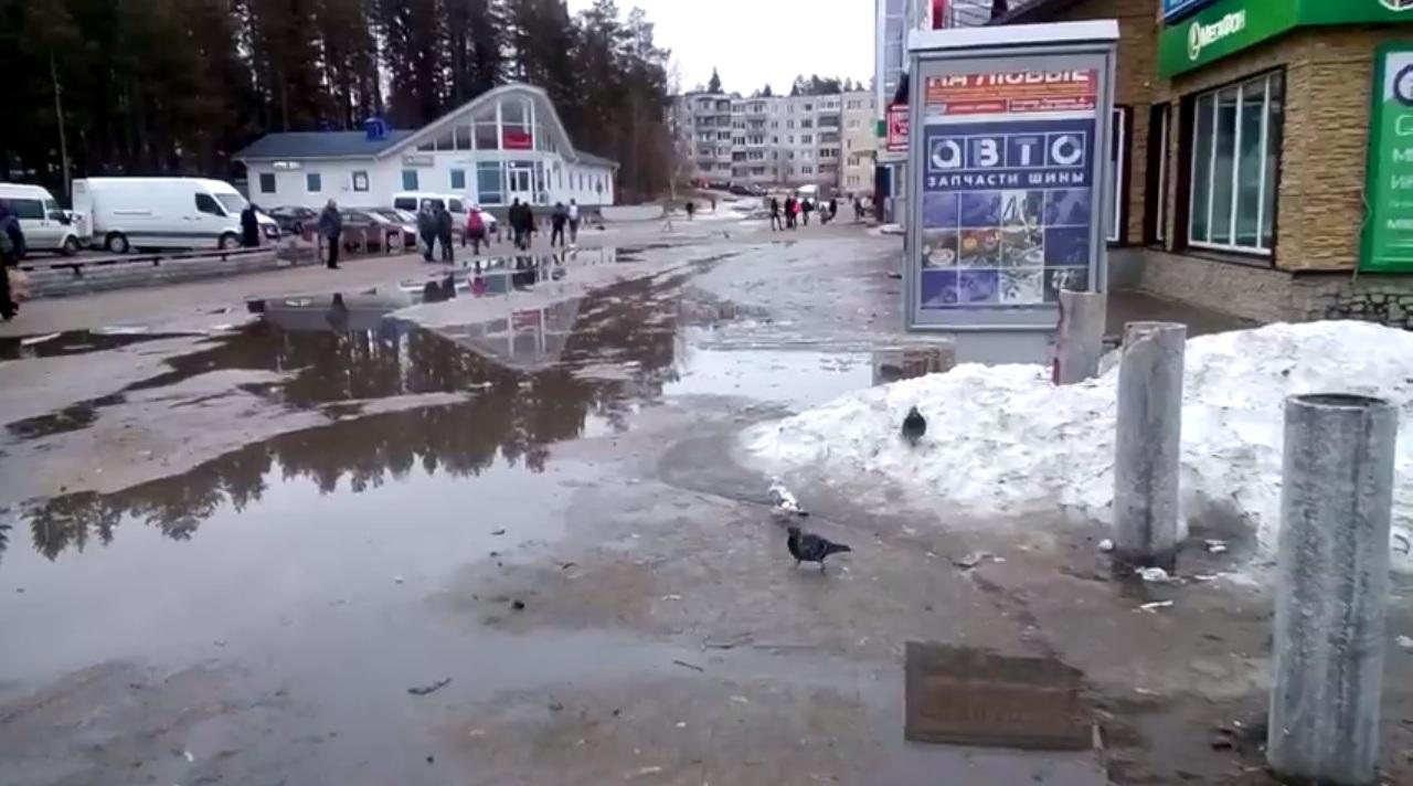 бульвар-видео