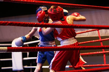 Турнир по боксу на призы Карельского окатыша-2014 (31)