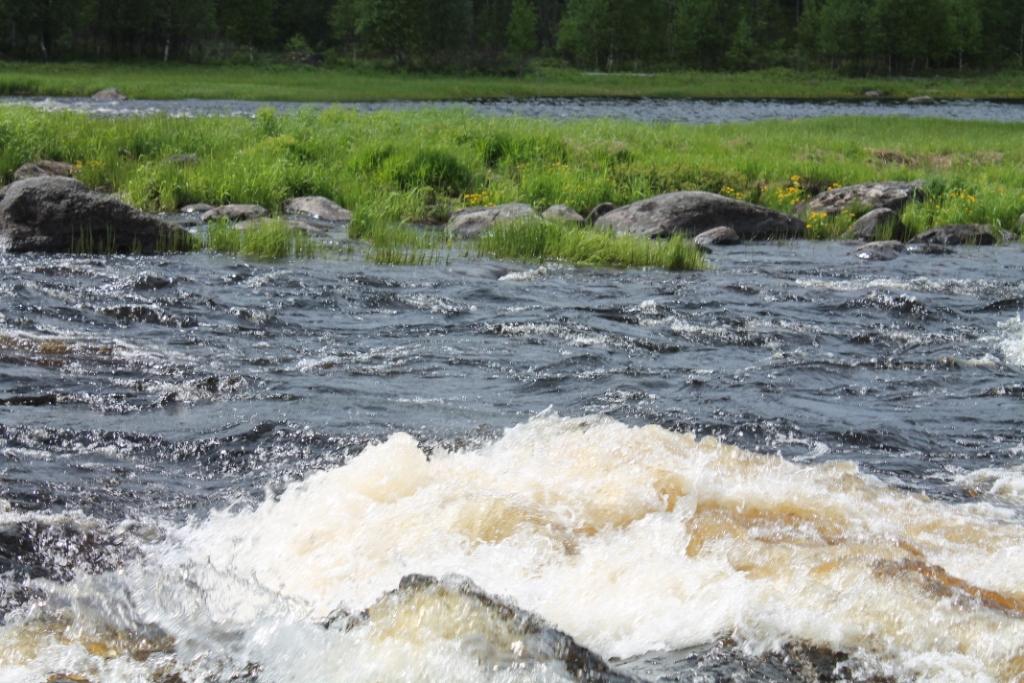 водное ралли Костомукша 2014 (5)