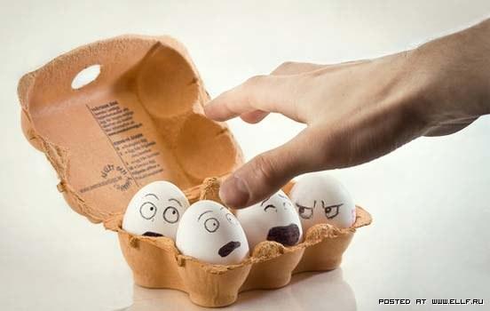 яйца-2