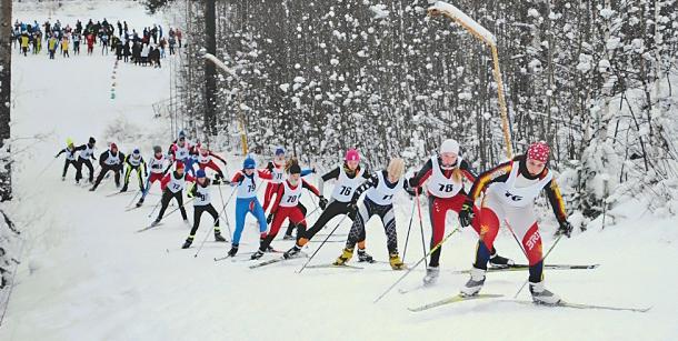 лыжи кондопога
