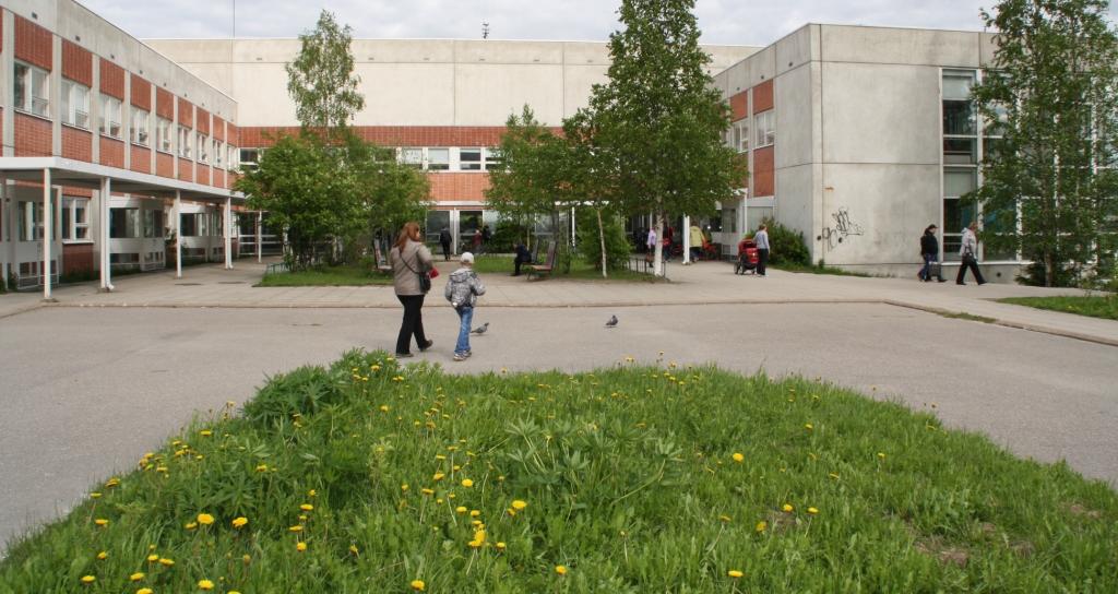 газон поликлиника (1)