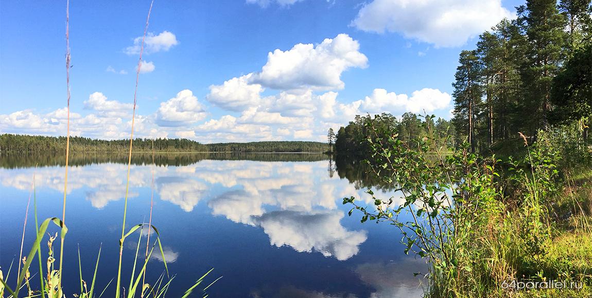 Костомукша озеро природа