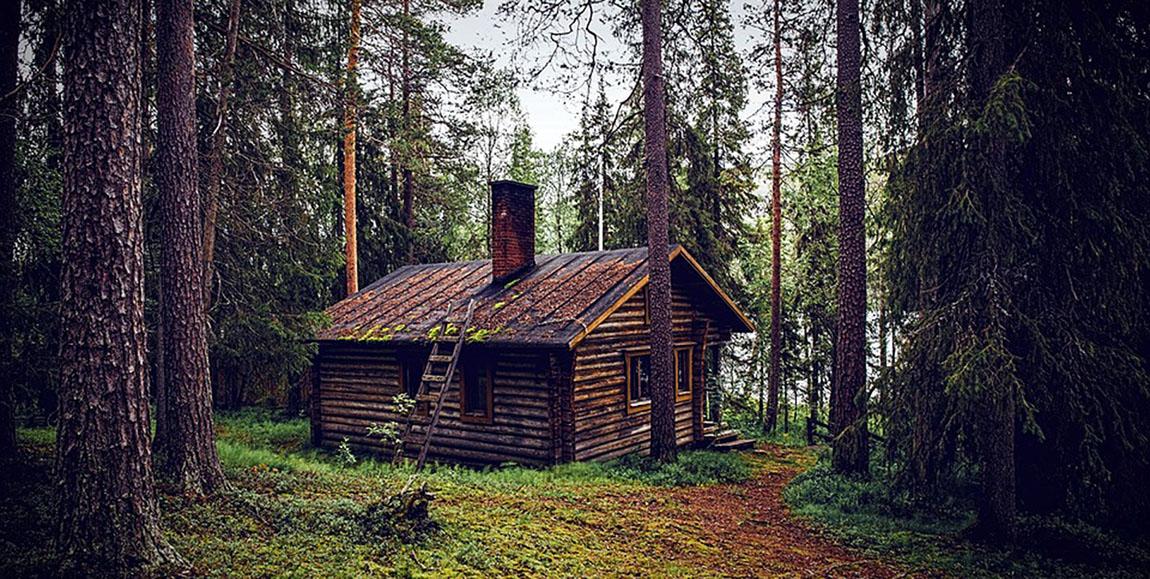дом лес пиксабай