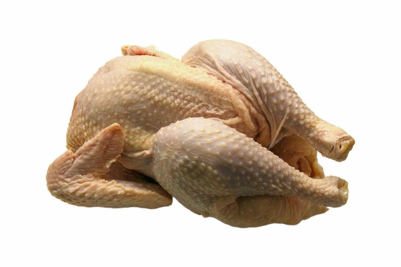 Pixabay chicken