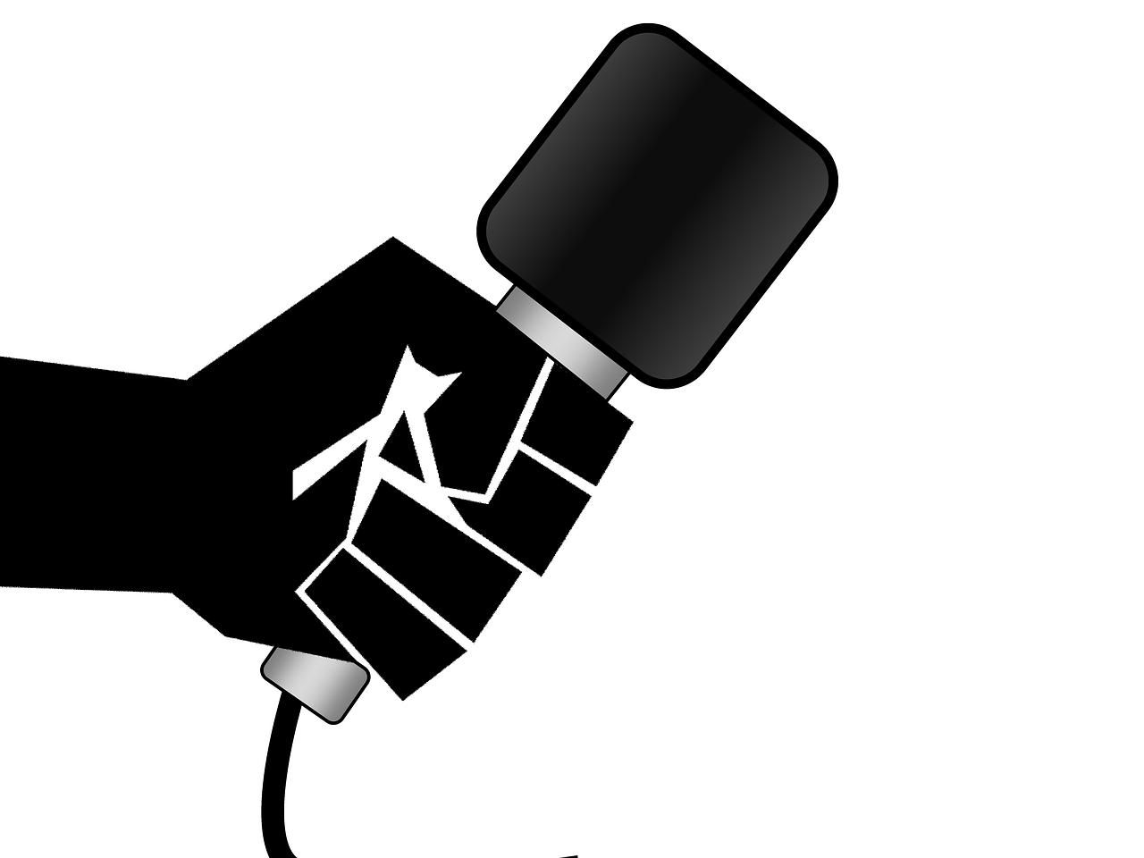 микрофон журналист Пиксбэй