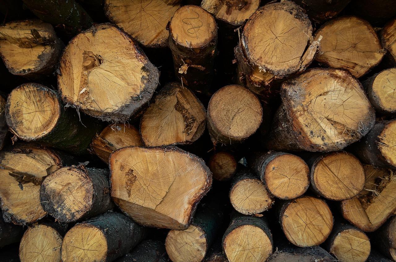 лес рубки Пиксбэй