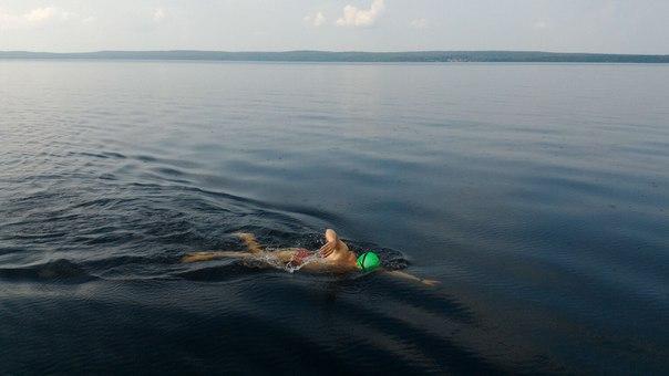 пловец заплыв