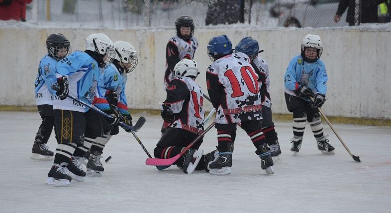 хоккей Рыси