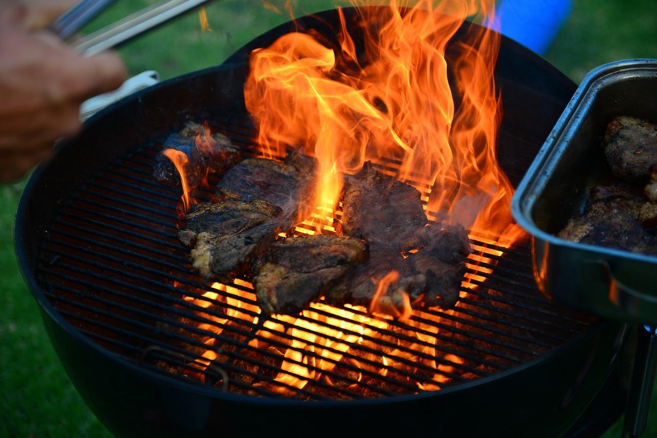 мангал пикник огонь шашлык Пиксбэй
