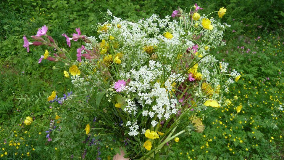 цветы Юле