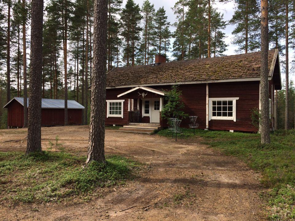 дом в лесу Финляндия Юле