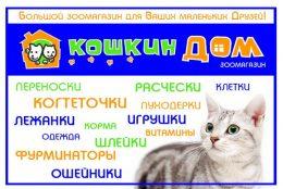 koshkin-dom-2
