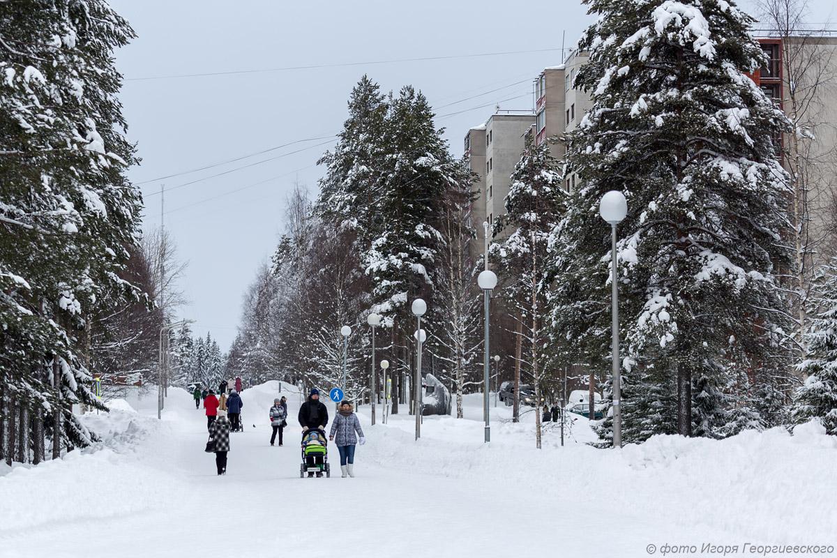 первооткрывателей зима