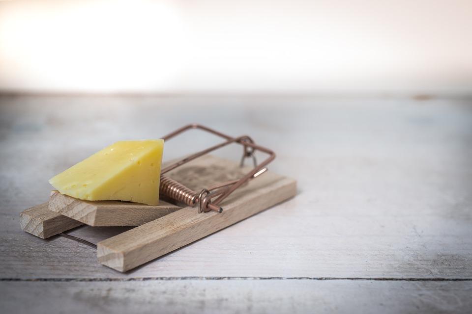 мышеловка сыр пиксабай