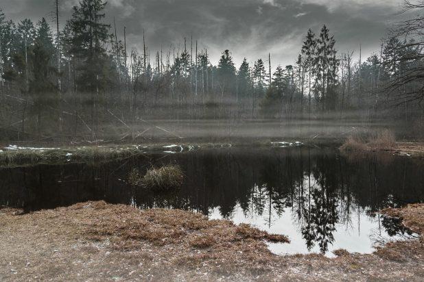 болото Пиксабей