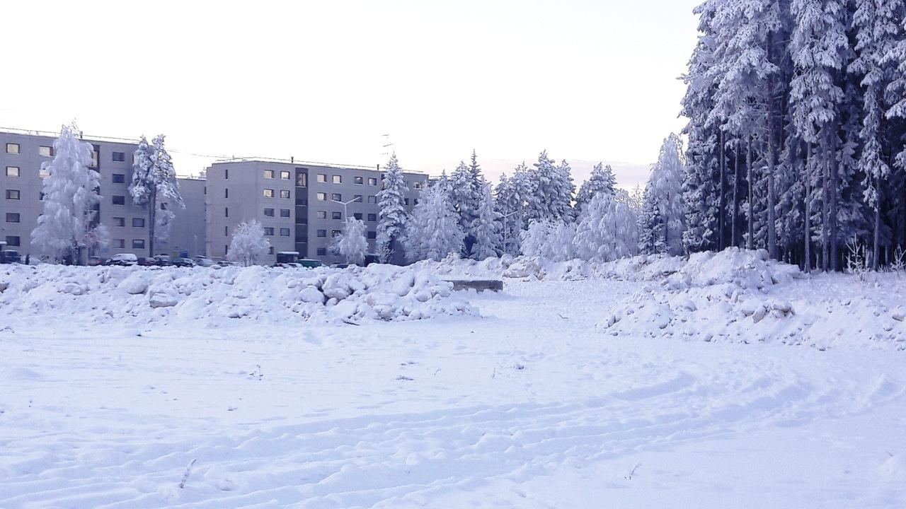 пустырь ленина снег