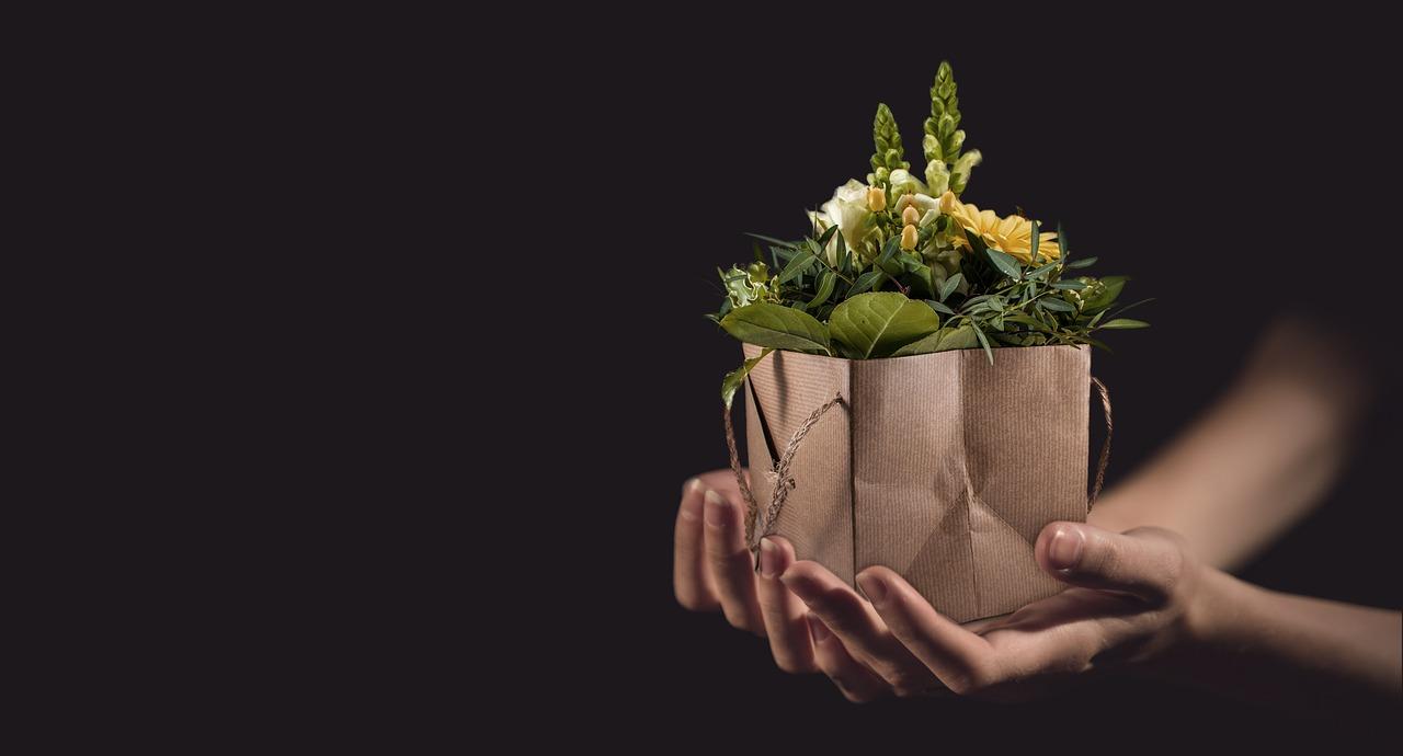 подарок цветы пиксабей