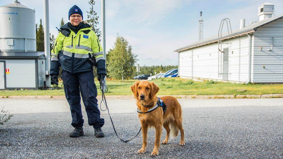 Фото: Elisa Kinnunen / Yle