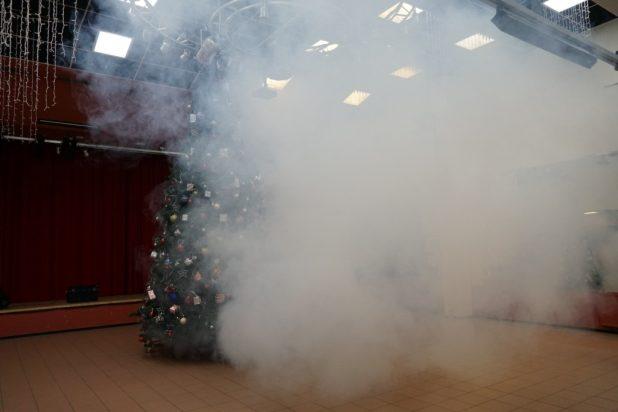 elka-v-dymu